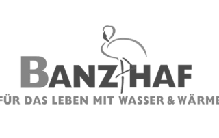 Banzhaf2