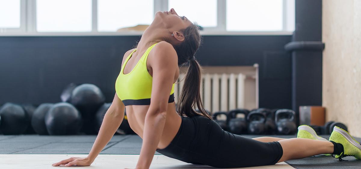 fitness-point-gerstetten-rueckenmuskulatur
